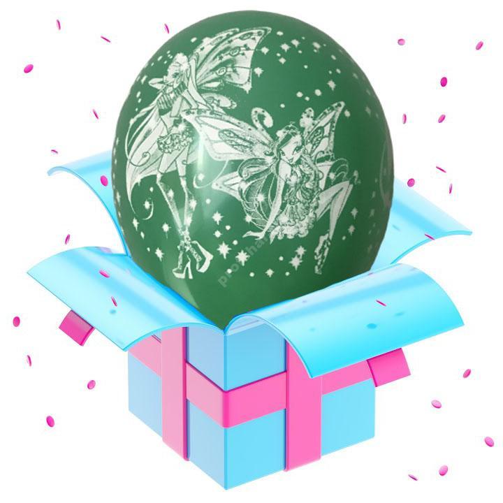 Шар феи Winx темно-зеленый
